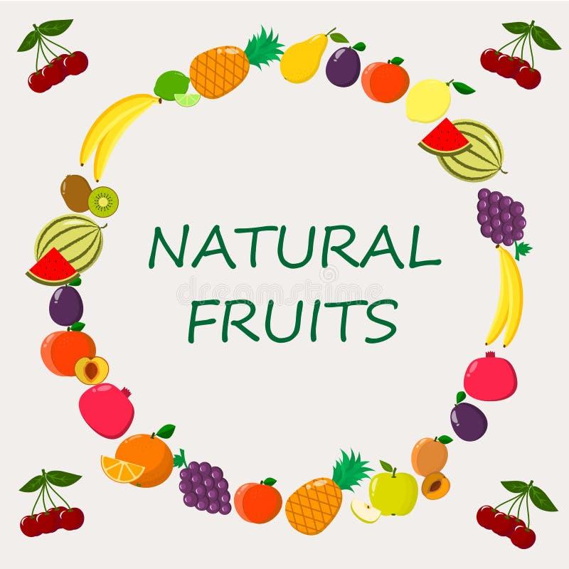 Illustration de différents genres de fruits sur un fond clair illustration stock