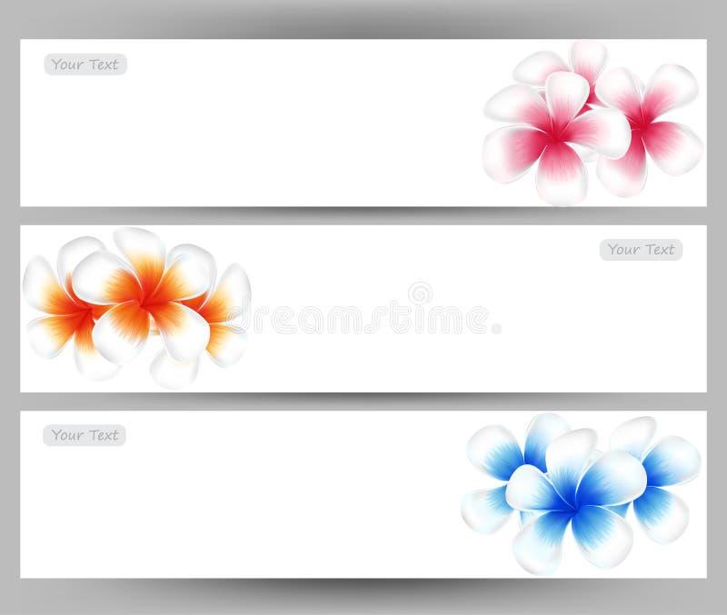 Illustration de Frangipani de fleur d'Hawaï, calibre coloré de brochure de Plumeria illustration stock
