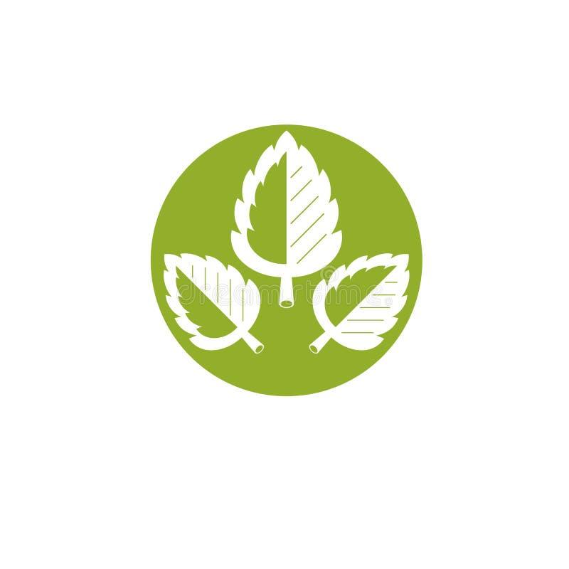 Illustration de graphique de vecteur des feuilles vertes Logotype abstrait conceptuel de Vegan pour l'usage dans la médecine holi illustration stock