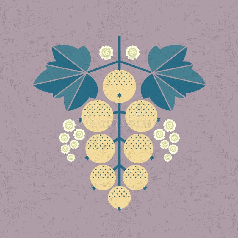 Illustration de groseille blanche Groseille blanche avec des feuilles et des fleurs sur le fond minable illustration stock