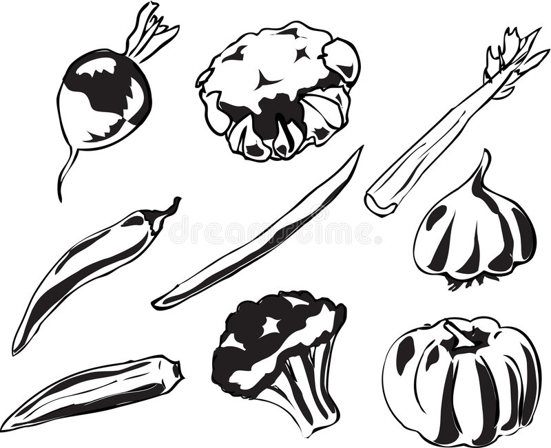Illustration de légumes illustration stock