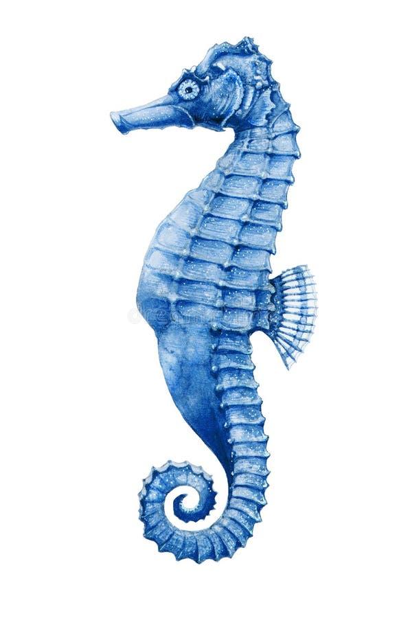 Illustration de l'aquarelle vive d'un cheval de mer Petits poissons tropicaux tirés à la main - créature colorée de l'aquarium, i illustration stock