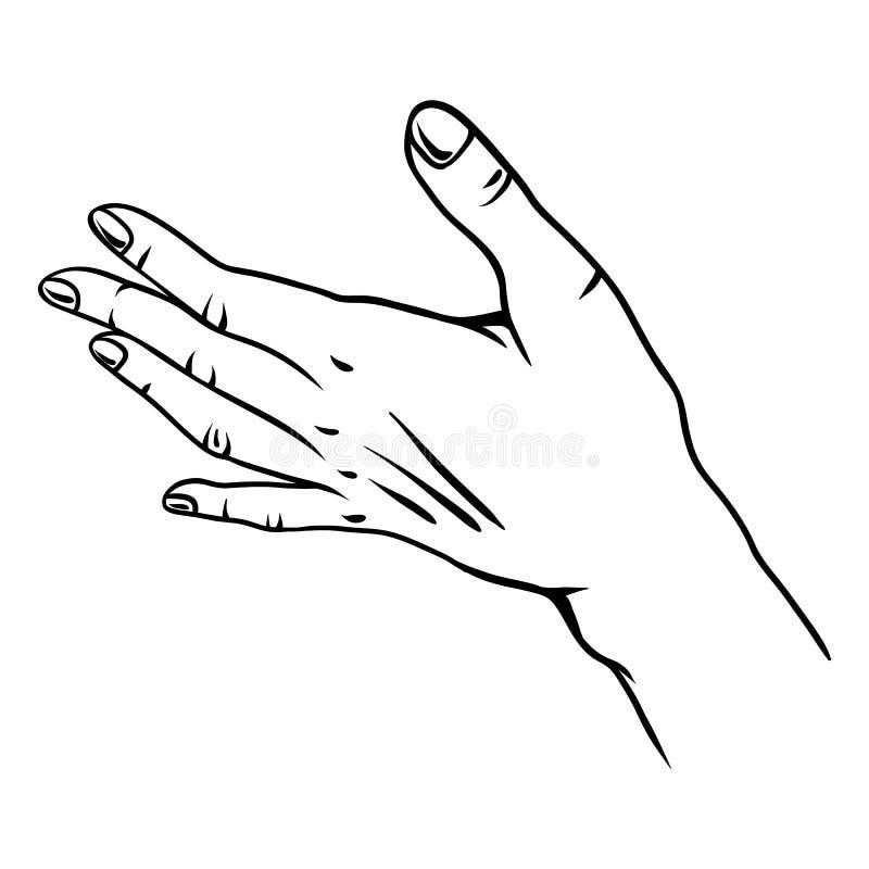 Illustration de main humaine illustration stock