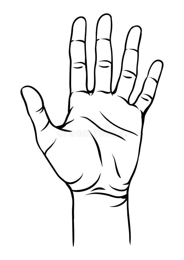 Illustration de main humaine illustration de vecteur