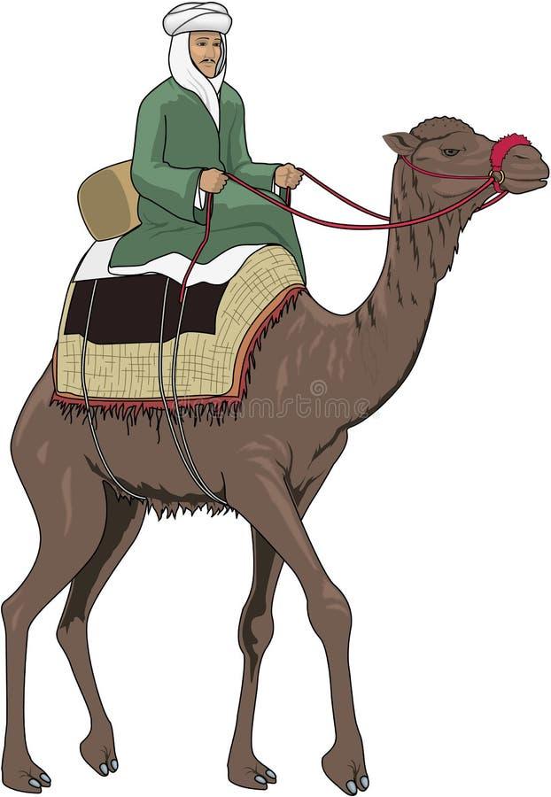 Illustration de monte arabe de vecteur de chameau illustration libre de droits
