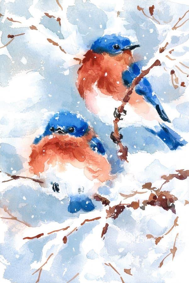 Illustration de Noël d'hiver de deux d'oiseaux bleus oiseaux d'aquarelle tirée par la main illustration libre de droits