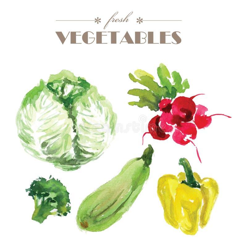 Illustration de nourriture fraîche illustration stock