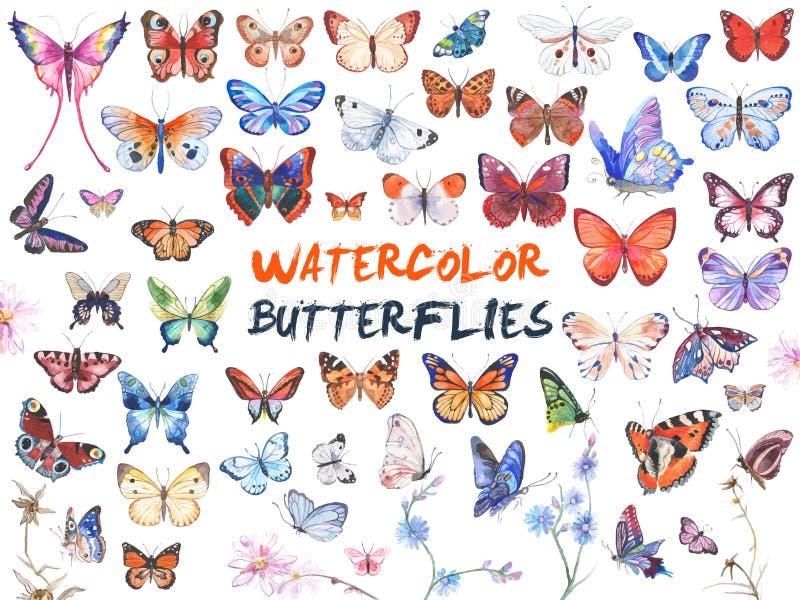 Illustration de papillons d'aquarelle illustration de vecteur
