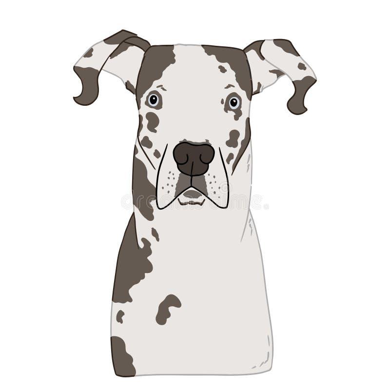Illustration de portrait coloré étonné de tête de chien de mastiff sur le fond blanc Dirigez l'art tiré par la main de la race de illustration libre de droits