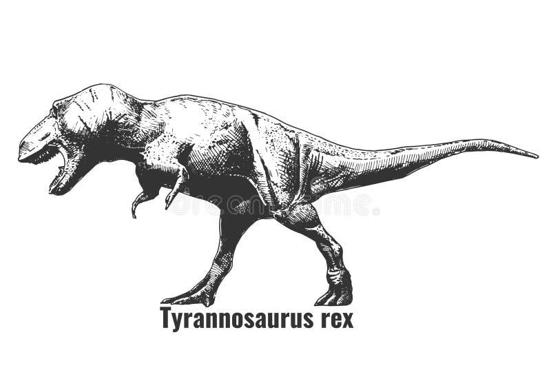 Illustration de rex de tyrannosaure illustration stock