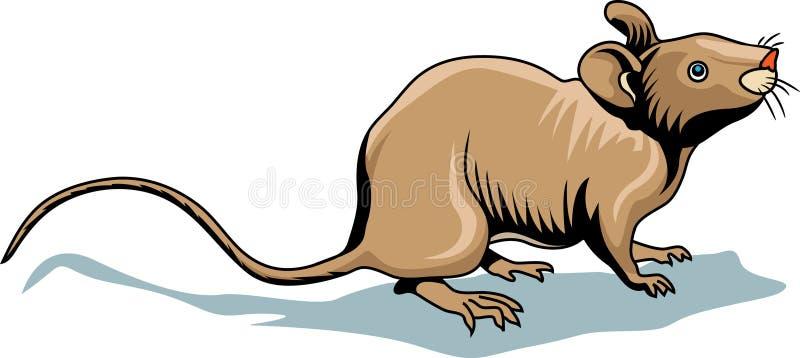 Illustration de souris illustration de vecteur