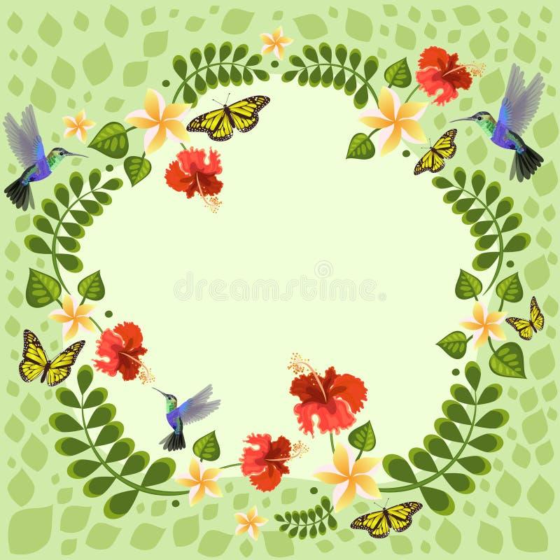 Illustration de vecteur avec des colibris, des papillons, le plumeria et la ketmie Illustrations florales pour des cartes de mari illustration stock