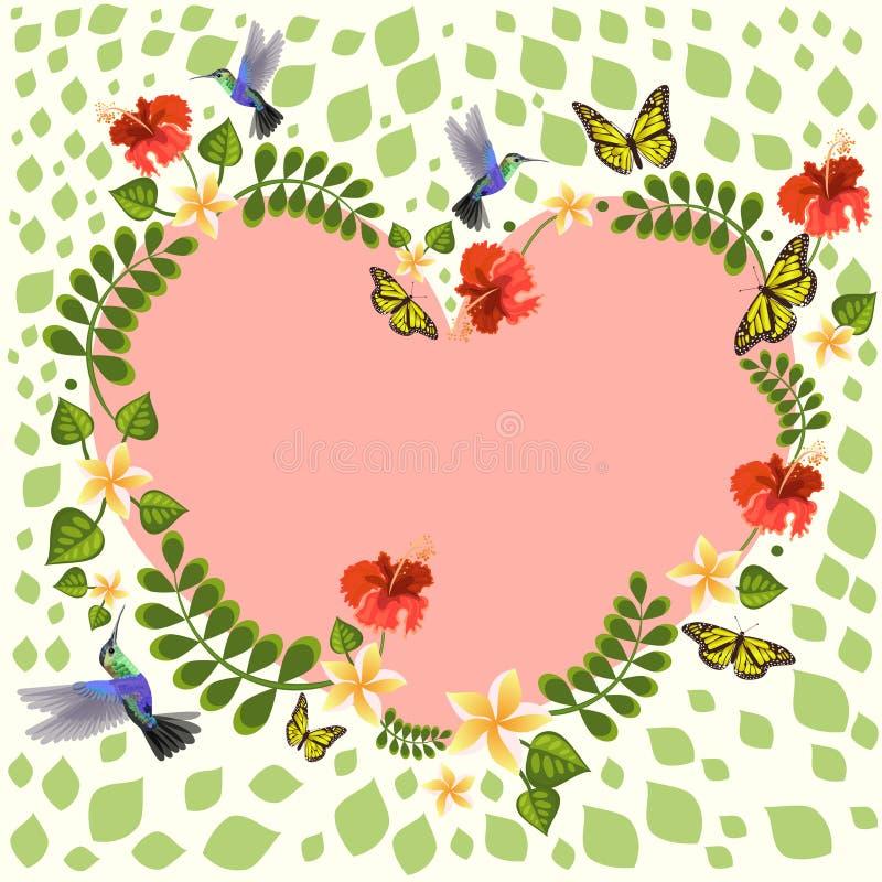 Illustration de vecteur avec des colibris, plumeria, papillons, ketmie Illustrations florales pour des invitations, cartes de mar illustration libre de droits