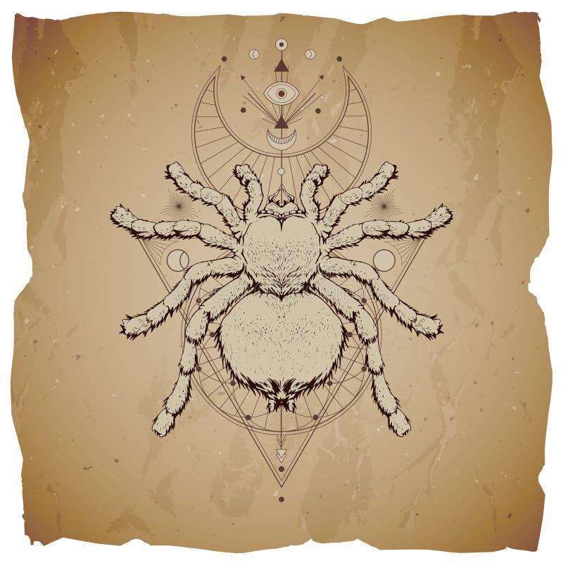 Illustration de vecteur avec l'insecte tiré par la main et symbole géométrique sacré sur le fond de papier de cru avec les bords  illustration de vecteur