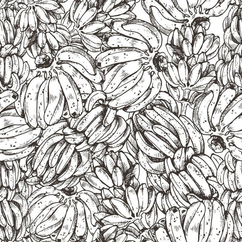 Illustration de vecteur de croquis de fruit de banane pour la conception, site Web, fond, bannière Élément de voyage et d'encre d photographie stock