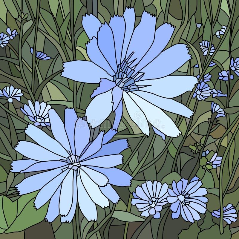Illustration de vecteur d'endive de fleur (chicoré sauvage). illustration libre de droits