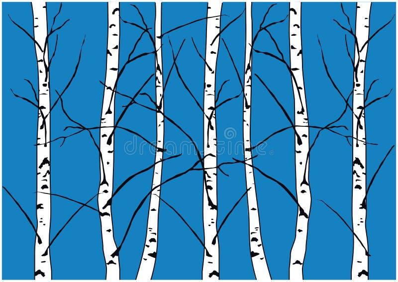 Illustration de vecteur d'hiver des arbres de bouleau nus d'isolement sur le fond bleu-foncé illustration libre de droits