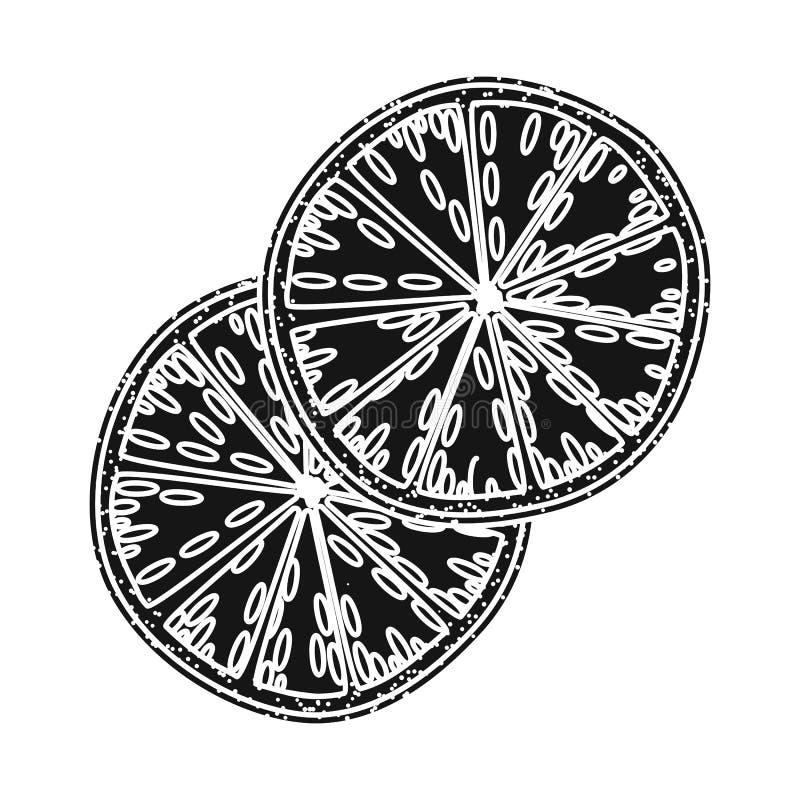 Illustration de vecteur d'icône orange et sèche Collection d'icône orange et juteuse de vecteur pour des actions illustration stock