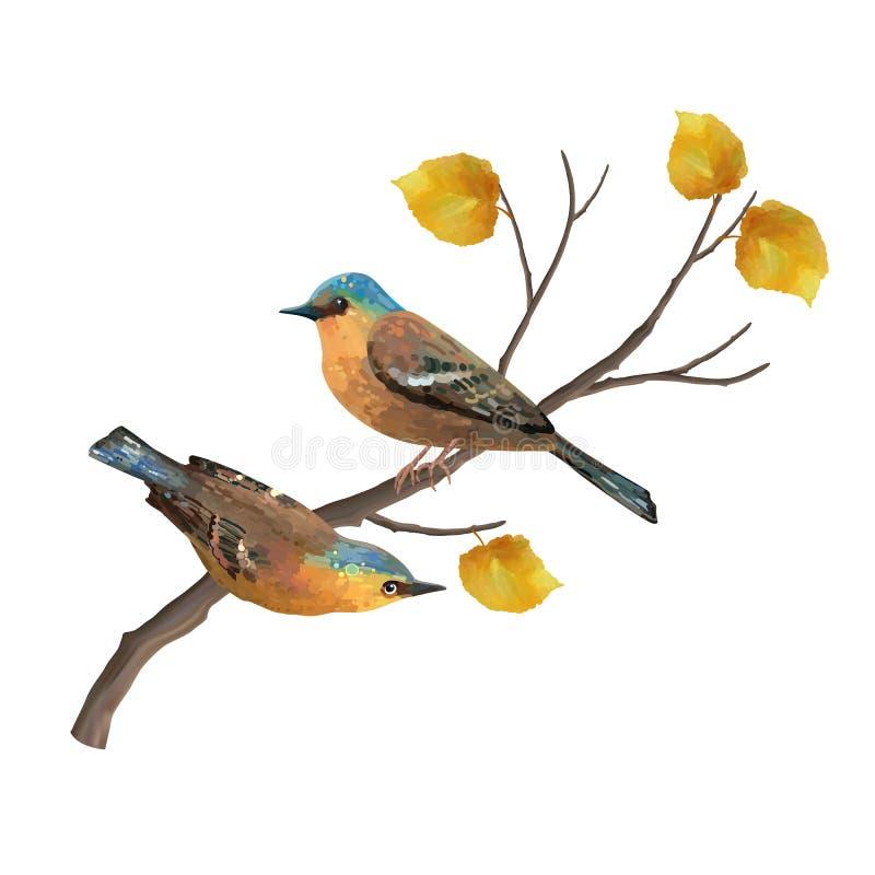 Illustration de vecteur d'oiseaux illustration stock