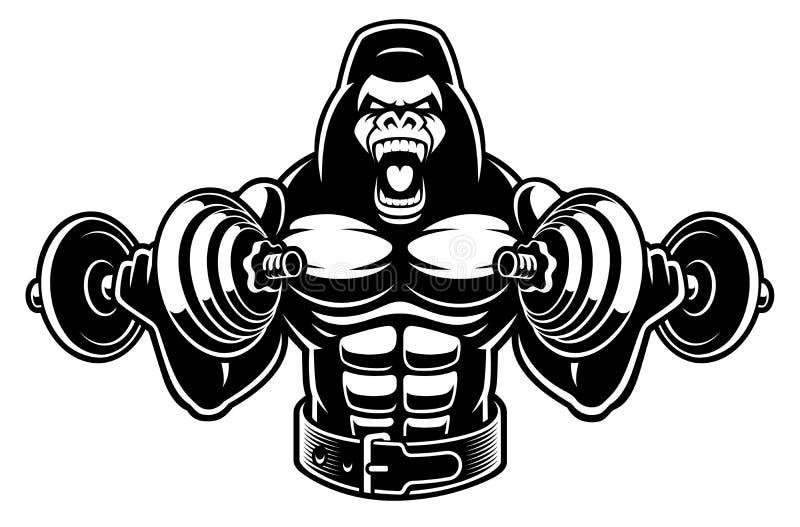 Illustration de vecteur d'un bodybuilder de gorille avec des haltères