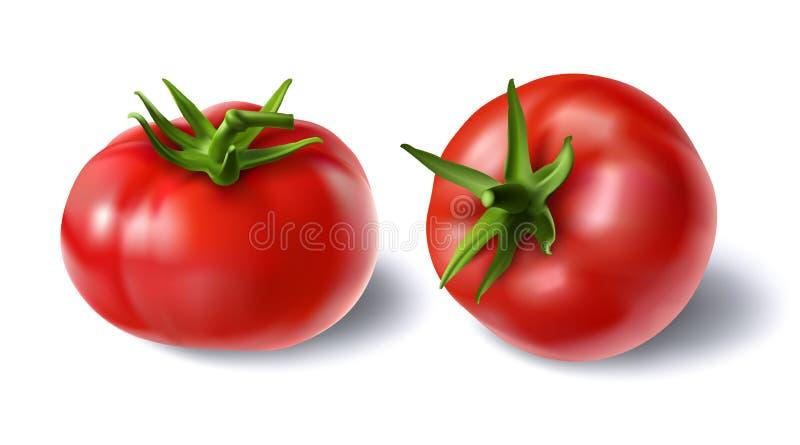 Illustration de vecteur d'un ensemble réaliste de style de tomates fraîches rouges de tiges vertes illustration libre de droits