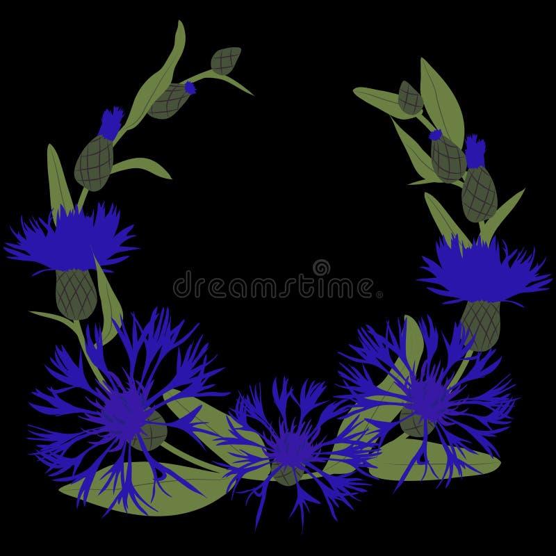 Illustration de vecteur d'une guirlande de centaurée bleue sur le fond noir illustration libre de droits