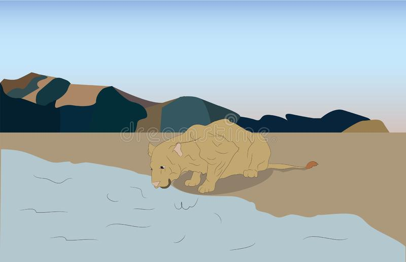 Illustration de vecteur d'une lionne femelle aux endroits d'arrosage illustration libre de droits