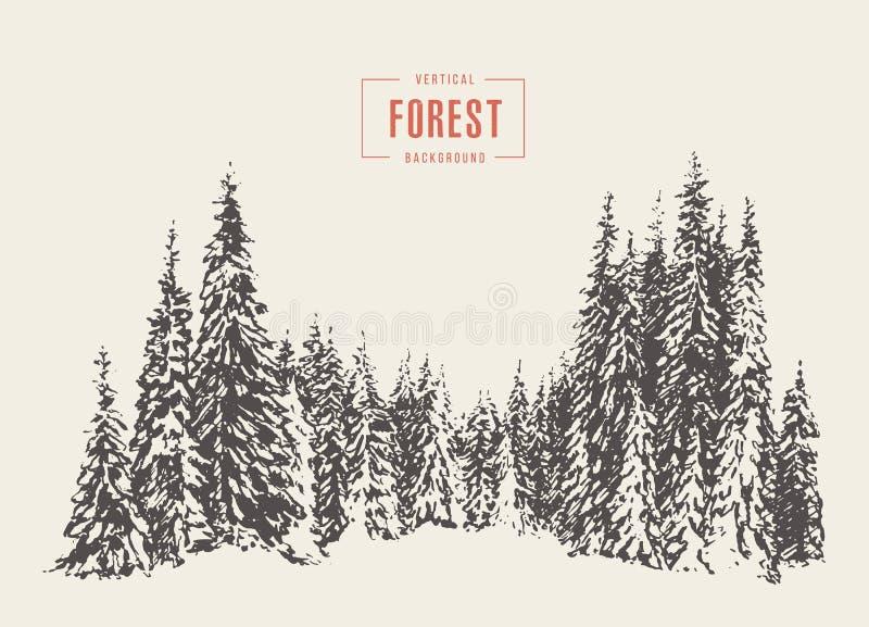 Illustration de vecteur de forêt de pin tirée par la main, croquis illustration de vecteur