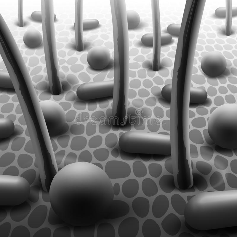 Illustration de vecteur des bactéries sphériques et en forme de tige sur la peau avec des poils, flore microbienne sous le micros illustration stock