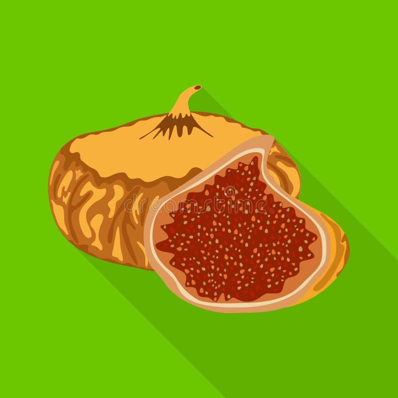 Illustration de vecteur des figues et du logo sec Collection des figues et du symbole boursier de régime pour le Web illustration stock