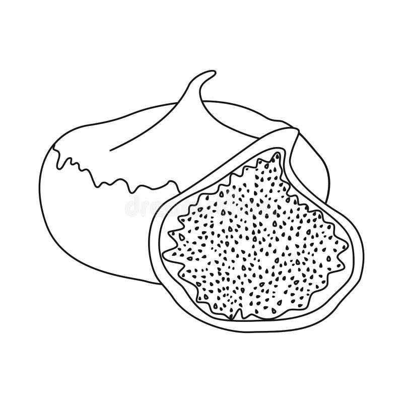 Illustration de vecteur des figues et du signe sec Placez des figues et de l'illustration de vecteur d'actions de régime illustration de vecteur