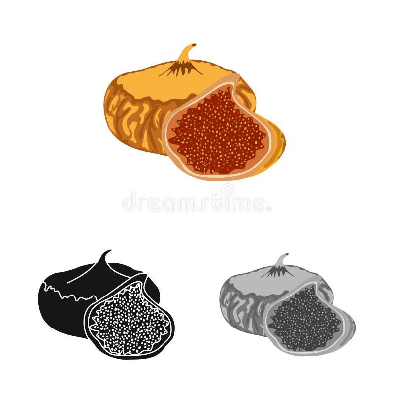 Illustration de vecteur des figues et du symbole sec Collection des figues et de l'illustration de vecteur d'actions de régime illustration stock