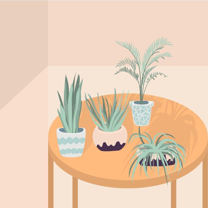 Illustration de vecteur des plantes d'int?rieur sur la table avec de longues ombres Dessin plat de vecteur des fleurs dans des po illustration stock