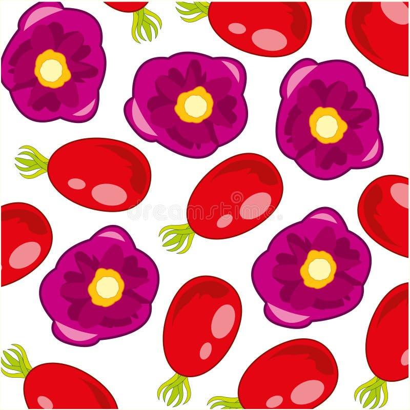 Illustration de vecteur du fruit de modèle et de la fleur décoratifs de la rose sauvage illustration de vecteur