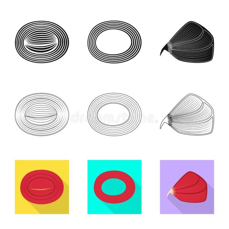 Illustration de vecteur de fibre et d'ic?ne musculaire Collection d'illustration de vecteur d'actions de fibre et de corps illustration stock