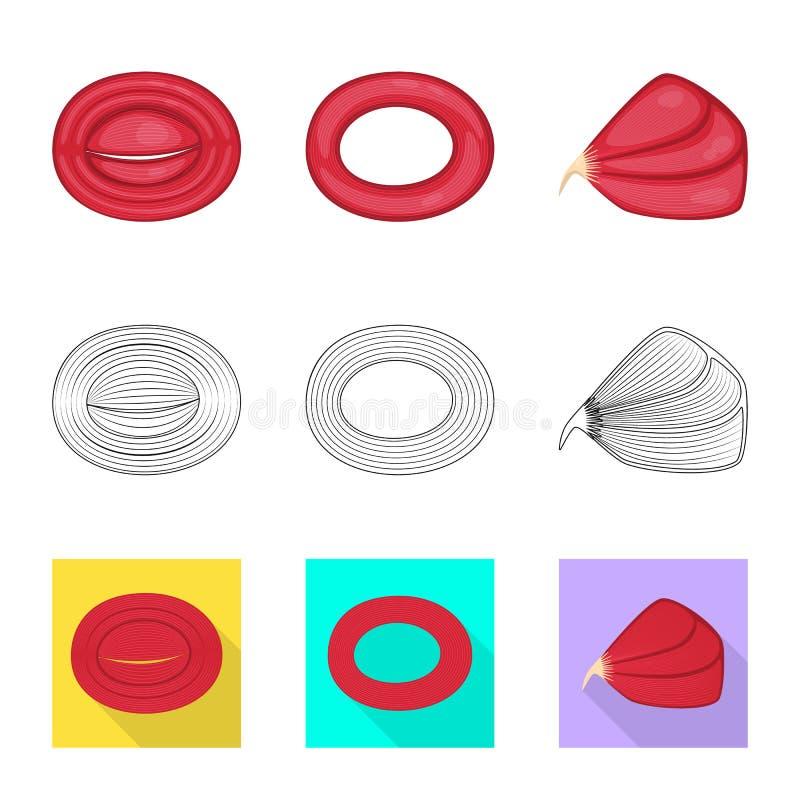 Illustration de vecteur de fibre et d'ic?ne musculaire Placez du symbole boursier de fibre et de corps pour le Web illustration libre de droits