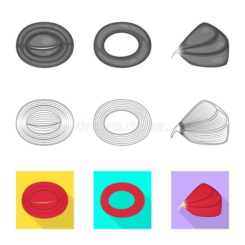 Illustration de vecteur de fibre et d'ic?ne musculaire Placez de l'illustration de vecteur d'actions de fibre et de corps illustration stock