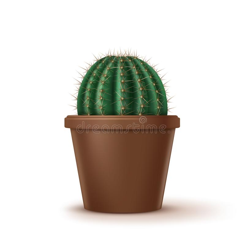 Illustration de vecteur de grand cactus de baril d'or dans le pot d'argile brun d'isolement sur le fond illustration stock
