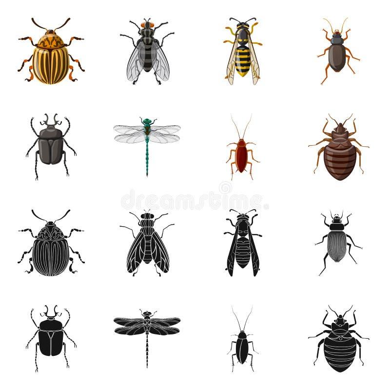 Illustration De Vecteur De Logo D'insecte Et De Mouche Ensemble D ...