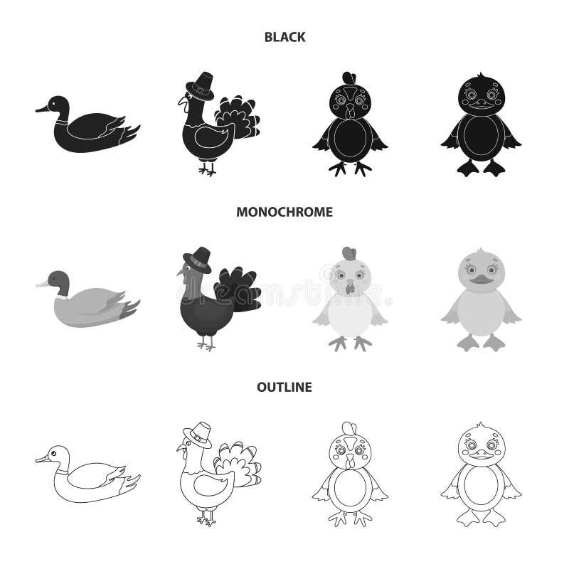 Illustration de vecteur de logo dr?le et de volaille Collection de symbole boursier dr?le et agricole pour le Web illustration libre de droits