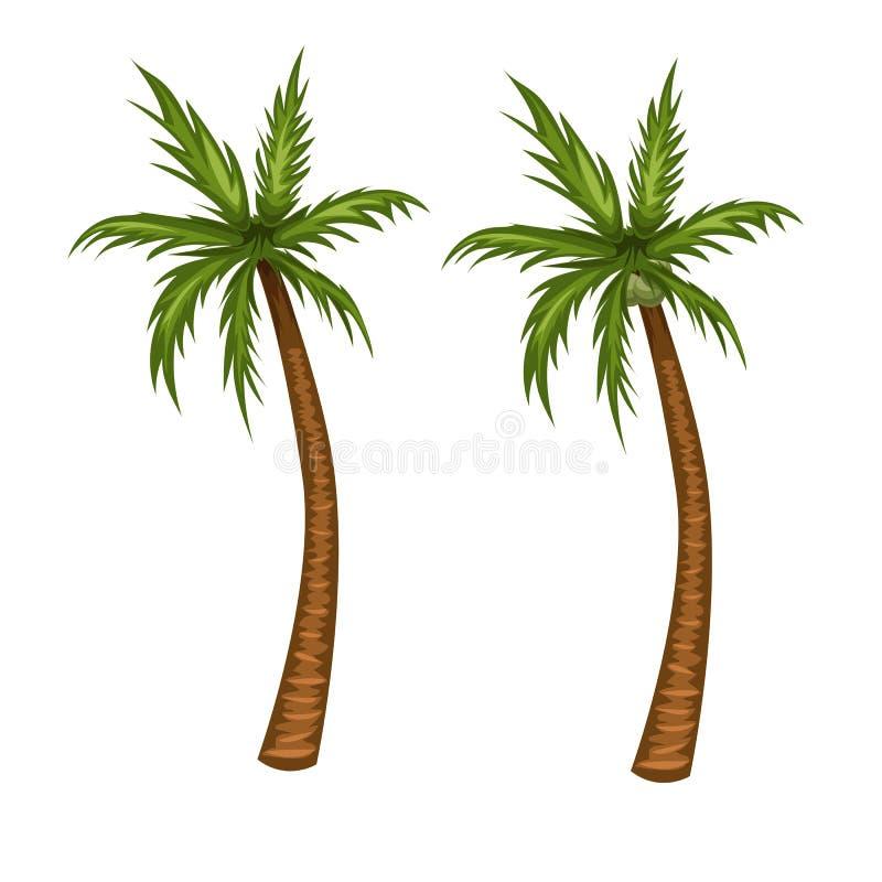 Illustration de vecteur de palmier Image de bande dessinée d'arbre de noix de coco illustration de vecteur