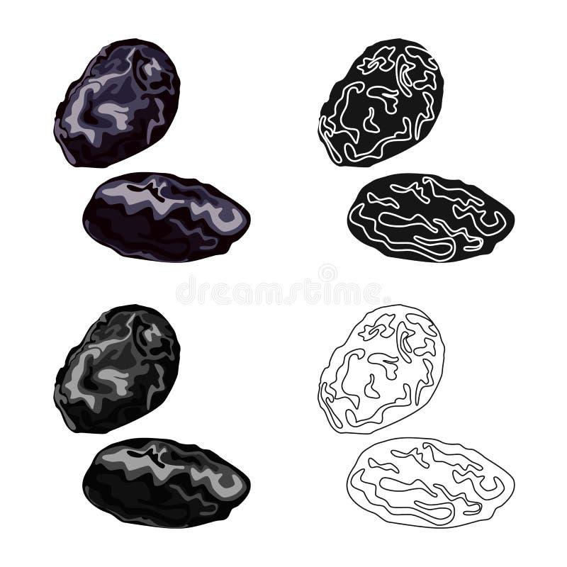Illustration de vecteur de prune et de logo sec Placez de la prune et de l'icône mûre de vecteur pour des actions illustration libre de droits