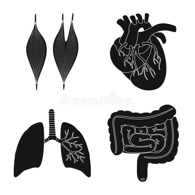 Illustration de vecteur de recherche et de logo de laboratoire Collection de symbole boursier de recherches et d'organe pour le W illustration stock