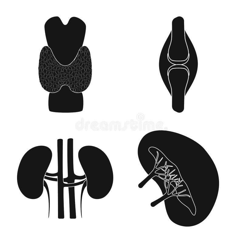 Illustration de vecteur de recherche et de symbole de laboratoire Placez de l'ic?ne de vecteur de recherches et d'organe pour des illustration stock