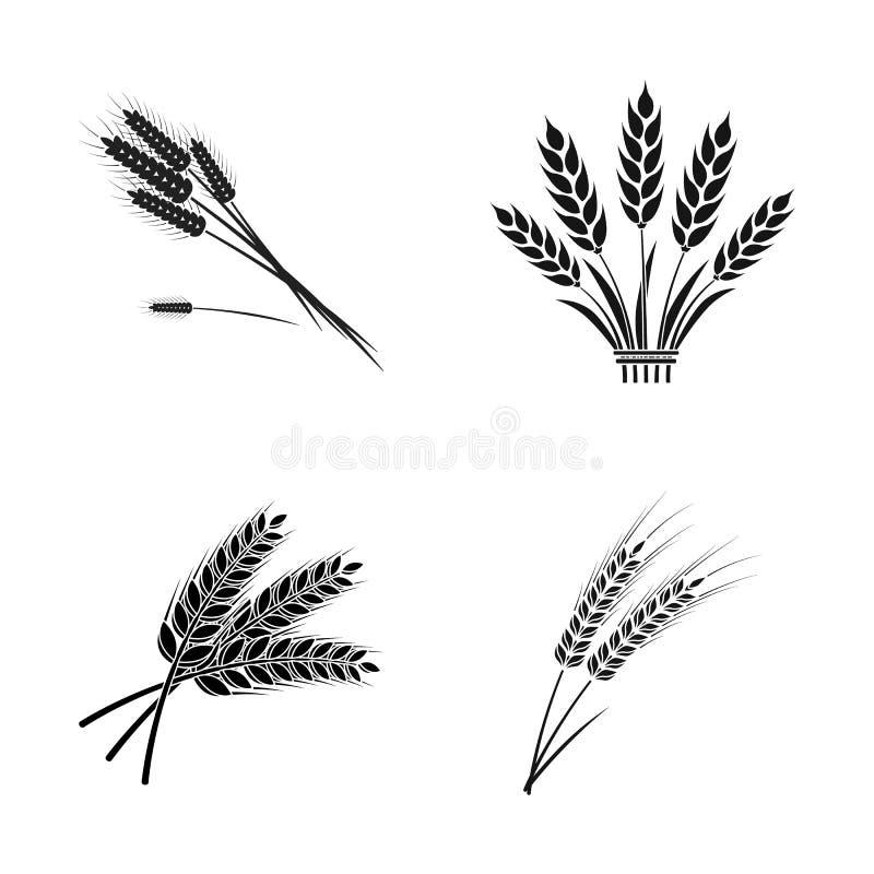 Illustration de vecteur de signe de blé et de tige Collection d'icône de vecteur de blé et de grain pour des actions illustration libre de droits