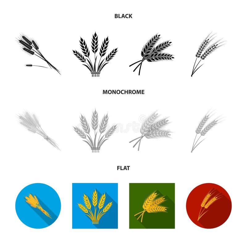 Illustration de vecteur de symbole de blé et de tige Collection de symbole boursier de bl? et de grain pour le Web illustration de vecteur