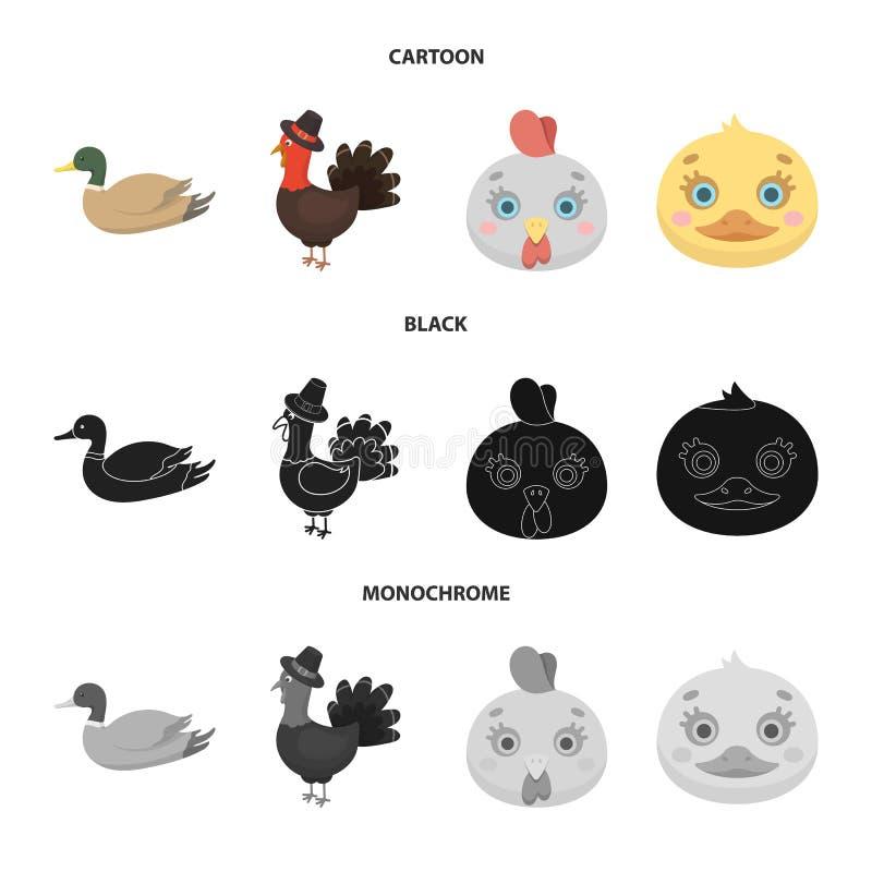 Illustration de vecteur de symbole dr?le et de volaille Placez du symbole boursier dr?le et agricole pour le Web illustration stock