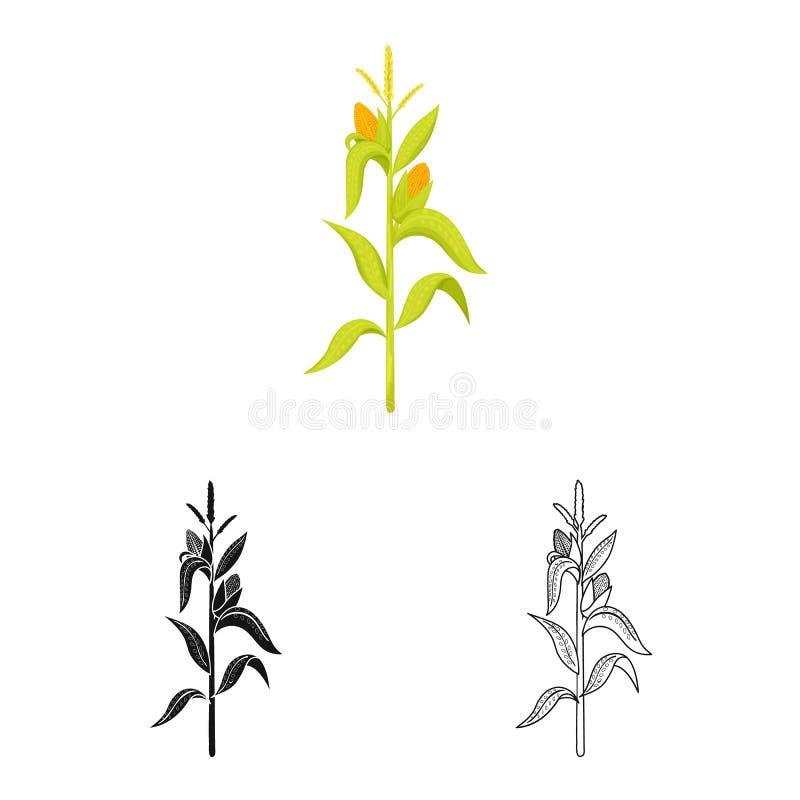 Illustration de vecteur de symbole de maïs et de tige Collection de symbole boursier de ma?s et de champ pour le Web illustration libre de droits