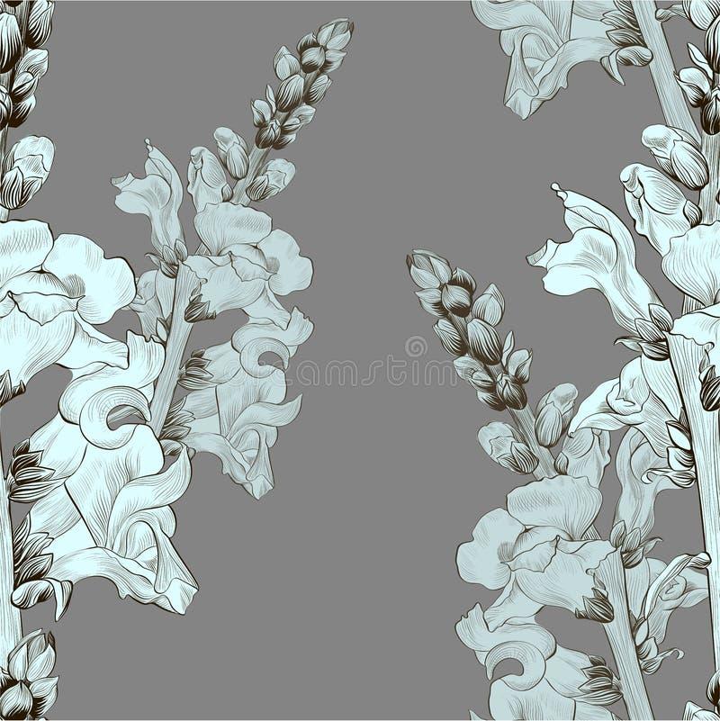 Illustration de vecteur Une branche avec des fleurs et des bourgeons Configuration sans joint antirrhinum illustration de vecteur
