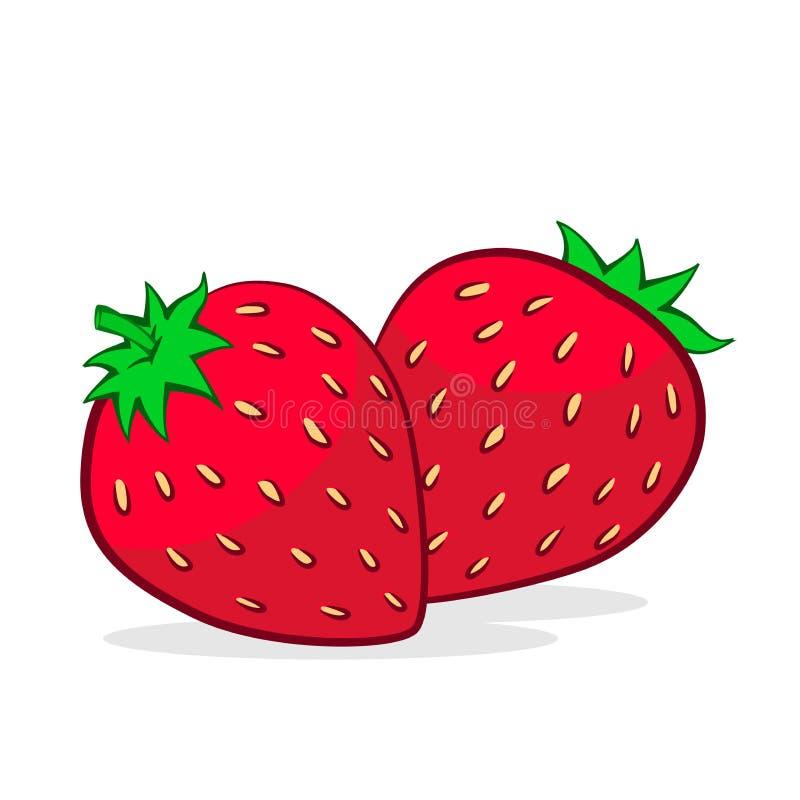 Illustration der Erdbeere, Vektor-Illustration lizenzfreie abbildung